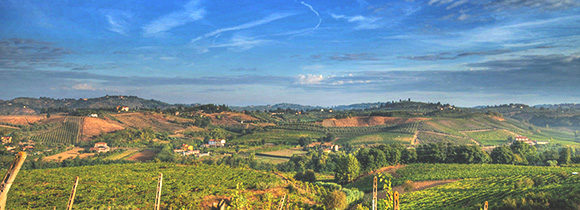 Wine tasting tour in Chianti